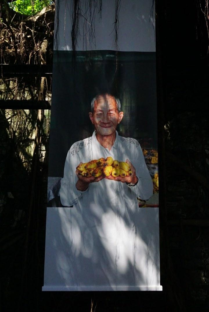 【台南安平景點】樹屋裡的攝影展